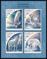 GUINEA REP. 2018 **MNH Arctic Animals Arktische Tiere Animaux De Arctique M/S - IMPERFORATED - DH1847 - Faune Arctique