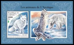 GUINEA REP. 2018 **MNH Arctic Animals Arktische Tiere Animaux De Arctique S/S - IMPERFORATED - DH1847 - Faune Arctique