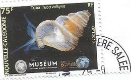 Nouveauté    Muséum      Beau  Cachet (pag12) - Neukaledonien