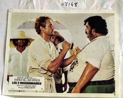 """{08148} 1 Photo Du Film """" Les 2 Missionnaires """" J-P AUMONT, T HILL, R LOGGIA, M-C QUASIMODO, B SPENCER  """" En Baisse """" - Photos"""