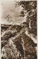 Pantymwyn  [AA19-150 - Postcards