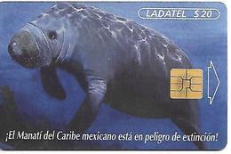 CARTE-PUCE-MEXIQUE-SO3-LAMENTIN Des CARAIBES-TBE - Non Classificati