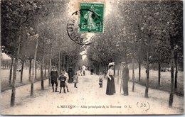 92 MEUDON - Allée Principale De La Terrasse - Meudon