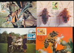 Luxembourg Wildlife Conservation Goldcrest Bird Insect Beekeepers Police Maximum Cards 1980-1990 WYSIWYG A04s - Maximum Cards