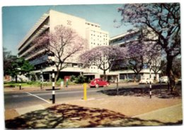 Pretoria - Dazzling White Walls And Purple Jacarandas At The University Of South Africa In Pretoria - Afrique Du Sud