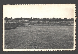 Seny En Condroz - Panorama - Tinlot