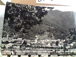 CALIZZANO VEDUTA  V1960 GY6101 - Savona