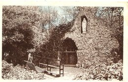 59 SOLRE-LE-CHÂTEAU - Grotte Notre-Dame De Lourdes - Solre Le Chateau