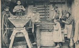 H220 - 61 - Fabrication Du Cidre - Extraction Du Jus De Pomme Par Pressurage - Francia
