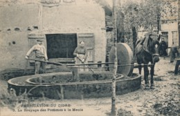H220 - 61 - Fabrication Du Cidre - Le Broyage Des Pommes à La Meule - Francia