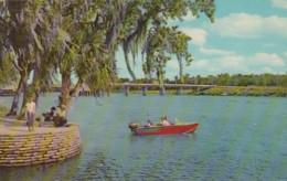 Florida Deland New Whitehair Bridge From Wayside Park - United States