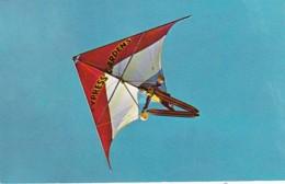Florida Cypress Gardens Delta Wing Kite - United States