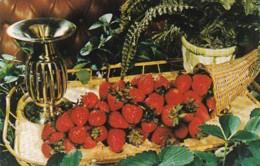 Florida Plant City Florida Strawberry Festival - United States