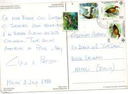1988  CARTOLINA - Seychelles (1976-...)