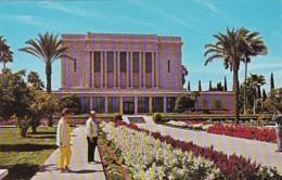 Arizona Mesa Mormon Temple - Mesa