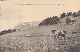 Elevage - Le Salève (Haute-Savoie) - Les Pâturages De La Grand'Gorge - Edition L. Fauraz - Carte Non Circulée - Elevage