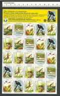 B53-39 CANADA Canadian Wildlife Federation Nature Seals Sheet 1993 MNH French - Local, Strike, Seals & Cinderellas