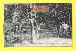 CPA  ¤¤ ASIE ¤¤ Env. SINGAPOUR ¤¤ Plantations De Caoutchouc - 1913 - Singapour