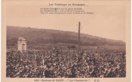 """21 Côte D'Or - Environs De DIJON -  """" Les Chambertin """" - Les Vendanges En Bourgogne - Vignes"""