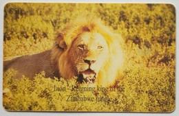 Lion Z$50 - Zimbabwe