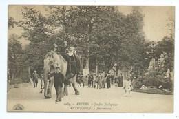 Antwerpen Anvers Jardin Zoologique - Antwerpen