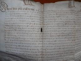 MANUSCRIT PARCHEMIN INCENDIE CHATEAU ANTOINE VAN OPHEM SEIGNEUR DE TACHENIERES A HAUTE CROIX INCENDIE CHATEAU 1582 - Historische Dokumente