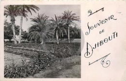 /!\ 8344 - CPA/CPSM - Afrique  : Djibouti : Souvenir De ... - Djibouti