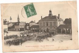 52 Haute Marne :  Nogent En Bassigny  Place De L' Hôtel De Ville ( Rare ) Réf 5424 - Nogent-en-Bassigny