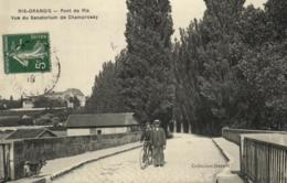 91 - Ris-Orangis - Pont De Ris - Sanatorium De Champrosay - C 1938 - Ris Orangis