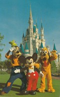 Mickey Mouse And His Pals, Goofy And Pluto Greet Guests Near The Towering Cinderella Castle - Disneyworld