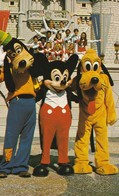 Goofy, Mickey And Pluto Pose With One Of The Many Disney Entertainment Groups - Disneyworld