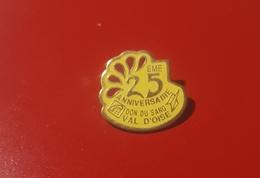 PIN'S 25ème Anniversaire DON DU SANG  Val D'Oise 95 - Medical