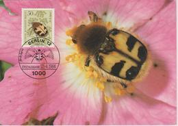 Allemagne Berlin Carte Maximum 1984 Insectes 673 - [5] Berlijn