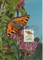 Norvège Carte Maximum 1993 Papillons 1072 - Cartes-maximum (CM)