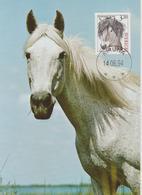 Suède Carte Maximum 1994 Cheval 1788 - Maximum Cards & Covers