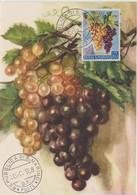 Saint Marin Carte Maximum 1958 Raisins 457 - Saint-Marin