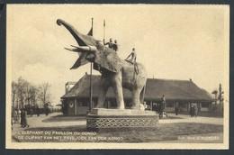 +++ CPA - BRUSSEL - BRUXELLES - Exposition 1935 - L'Eléphant Du Pavillon Du Congo  // - Universal Exhibitions