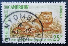 1964 Cameroun  Yt:CM 351A . Lion (Panthera Leo) . Oblitération NYOMBE 1964 - Cameroun (1960-...)