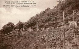 SAINT ETIENNE DE CHIGNY - Le Côteau Et Ses Habitations Troglodytes - Other Municipalities