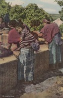 PATZICIA , Guatemala , 30-40s; Washing At Public Fountain - Guatemala
