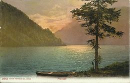 AK Reutte Plansee Sonnenuntergang Correspondenz Color ~1905 #21 - Reutte