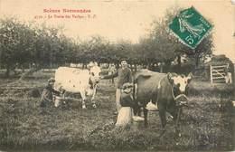 CPA Normandie Scènes Normandes La Traite Des Vaches - Laitière - Paysans - Elevage - Champs - Ferme - Basse-Normandie