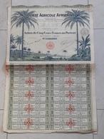 Action Au Porteur De 500 Francs Société Agricole Africaine 1926 - Afrique