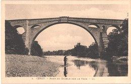 FR66 CERET - LL 9 - Pont Du Diable Sur Le Tech - Animée - Belle - Ceret
