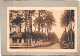ARES - 33 -   Boulevard De L'Aérium  - DELC33 - - Arès