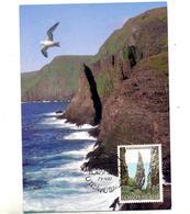 Carte Maximum 1987 Rocher Hestur - Féroé (Iles)