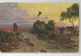 Tunisie Cachet Sousse 1910 Coucher De Soleil Illustré - Túnez