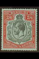 BERMUDA - Bermuda