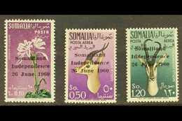 SOMALIA - Somalie (1960-...)