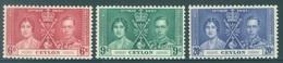 CEYLON - MNH/**  - 1937 - CORONATION -  Yv 249-251 -  Lot 18442 - Ceylon (...-1947)